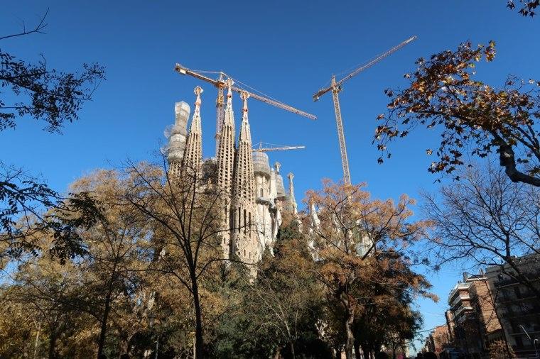 barcelona-bluestellar (3)